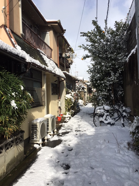 kyoto-winter-1